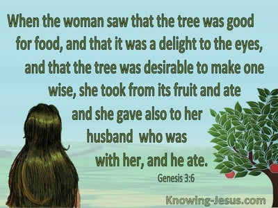Genesis 3:6 Genesis 3:6 Eve Took, Ate And Gave To Her Husband (red) (green)