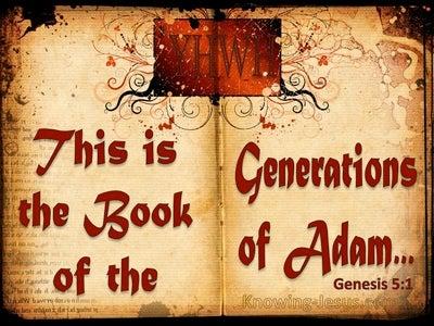 Genesis 5:1 The Generations Of Adam (red)