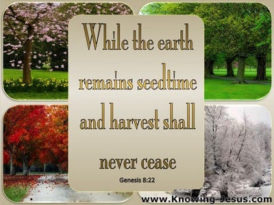 Genesis 8:22 While The Earth Remains Seedtime Shall Never Fail (beige)