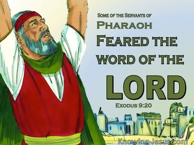 Exodus 9:20 Some Of Pharoah's Servants Feared God (green)