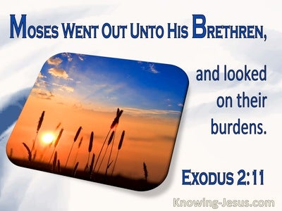 Exodus 2:11 Moses Went Out Unto His Brethren And Looked On Their Burdens (utmost)10:13