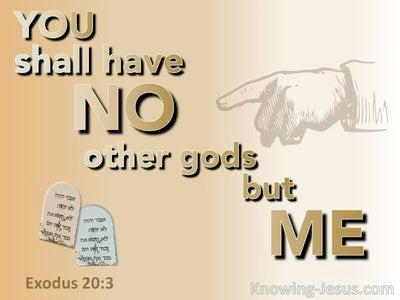 Exodus 20:3 No Other Gods But Me (orange)