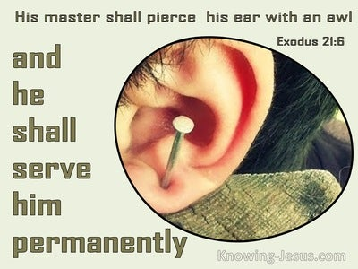 Exodus 21:6 His Master Shall Pierce His Ear With An Awl (sage)