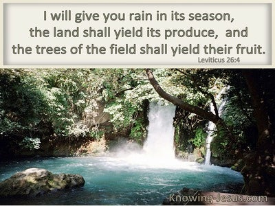 Leviticus 26:4 I Will Give You Rain In Due Season (windows)04:03