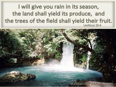 Leviticus 26:4 I Will Give You Rain In Due Season (windows)04:03