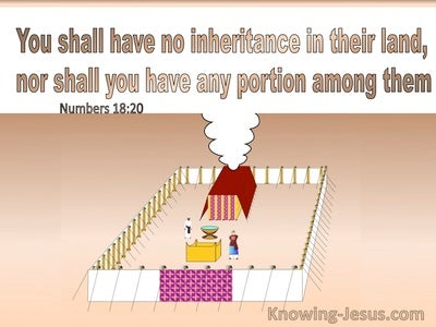 Numbers 18:20 You Shall Have No Inheritance In Their Land Nor Any Portion Among Them (brown)