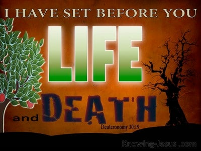 Deuteronomy 30:19 Choose Life Or Death (brown)