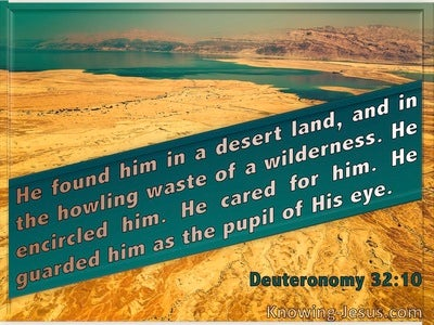 Deuteronomy 32:10 He Found Him In A Desert Land And Guarded Him As The Apple Of His Eye (green)