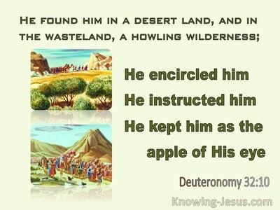 Deuteronomy 32:10 He Found Him In A Desert Land (green)