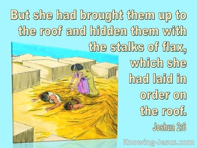 Joshua 2:6 She Hid The Spies In Stalks Of Flax (aqua)