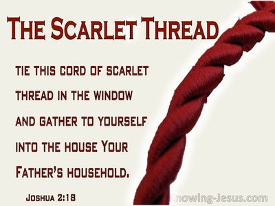 Joshua 2:18 Tie The Cord Of Scarlet In The Wondow And Gather Youself And Family Into The House (maroon)