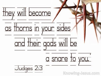 Judges 2:3 A Thorn In Your Side (white)