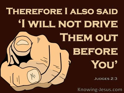 Judges 2:3 God Will Not Drive Them Out Befre Them (brown)