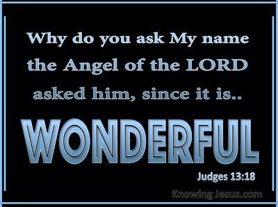 Judges 13:18 His Name Is Wonderful (blue)