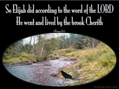 1 Kings 17:5 He Did According To The Word Of The Lord (black)
