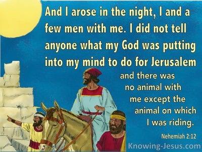 Nehemiah 2:12 I Arose In The Night, I And A Few Men With Me (aqua)