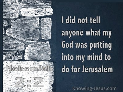Nehemiah 2:12 I Arose In The Night, I And A Few Men With Me (navy)