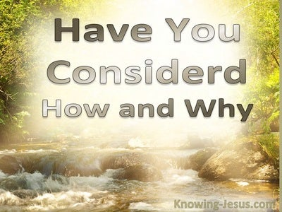 JOB - Have You Considered How and Why (devotional)