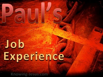 Pauls Job Experience (devotional) (red)