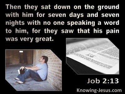 Job 2:13 They Sat On The Ground With Job For 7 Days And Nights And No One Spoke (black)