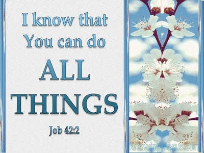 Job 42:2 You Can Do All Things (white)