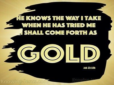 Job 23:10 He Knows The Way I Take (black)