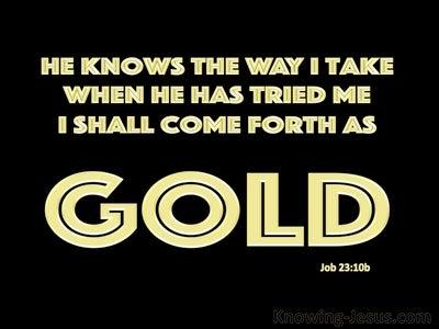 Job 23:10b He Knows The Way I Take (black)