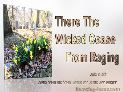 Job 3:17 The Wicked Cease Raging The Weary Are At Rest (brown)