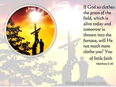 Matthew 6:30 If God So Clothe The Grass Of The Field (orange)