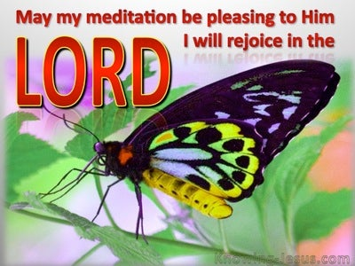 Psalm 104:34 I Will Rjoice In The Lord (red)