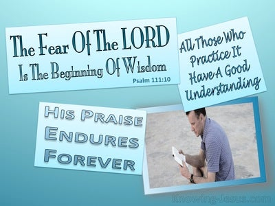 Psalm 110:10 The Fear Of The Lord Is The Beginning Of Wisdom (aqua)