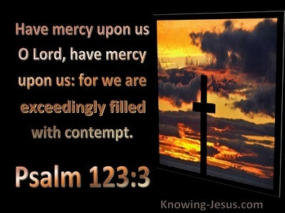 Psalm 123:3 Have Mercy Upon Us For We Are Filled With Contempt (utmost)11:23