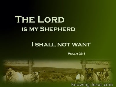 Psalm 23:1 The Lord Is My Shepherd (sage) copy
