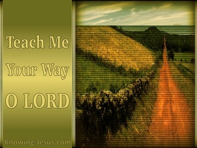 Psalm 27:11 Teach Me Your Way (sage)