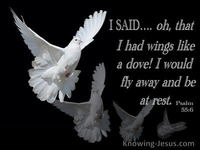 Psalm 55:6 Oh That I Had Wings Like A Dove (black)