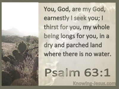 Psalm 63:1 Earnestly I Seek You (sage)