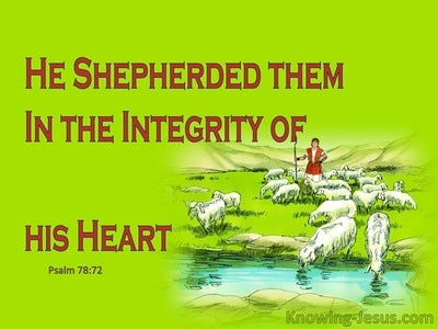 Psalm 78:72 He Shepherded Them in Integrity (green)