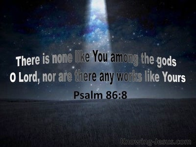 Psalm 86:8 There Is None Like You (navy)