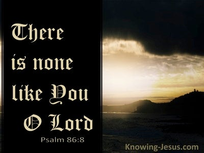 Psalm 86:8 There Is None Like You O Lord (black)