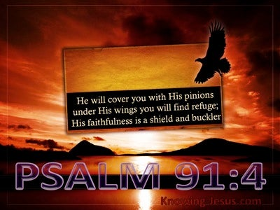 Psalm 91:4 He Will Cover You With His Pinions (black)