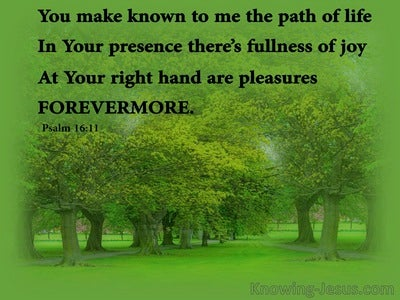 Psalm 16:11 You Make Known The Path Of Life (green)