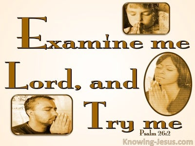 Psalm 26:2 Examine Me, Try Me, Test My Heart And Mind (brown)