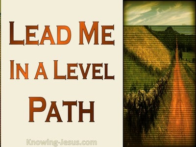 Psalm 27:11 Teach Me Your Way (brown)
