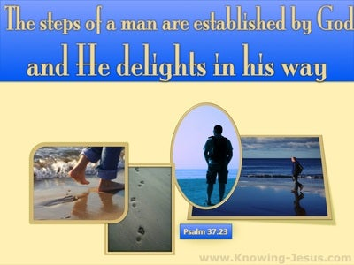 Psalm 37:23 The Lord Establishes The Steps Of A Man (cream)