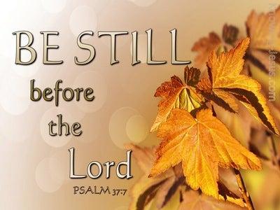 Psalm 37:7 Be Still My Soul (devotional)01:08 (brown)