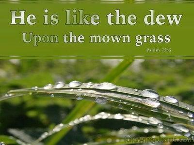 58 Bible verses about Rain