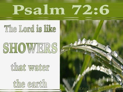 10 Bible verses about Showers