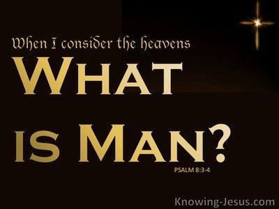 Psalm 8:3 When I Consider The Heavens (beige)