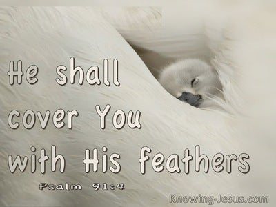 Psalm 91:4 He Shall Cover You With His Feathers (cream)