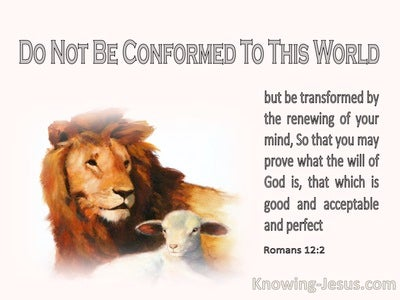 Romans 12:2 Be Transformed By The Renewing Of Your Mind (pink)